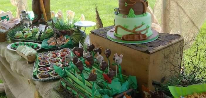catering-pastel-postres-estilo-campo-color-verde-marron