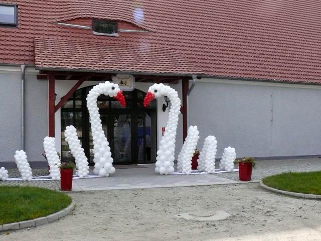 cisnes de globos decoración elegante antes puertas