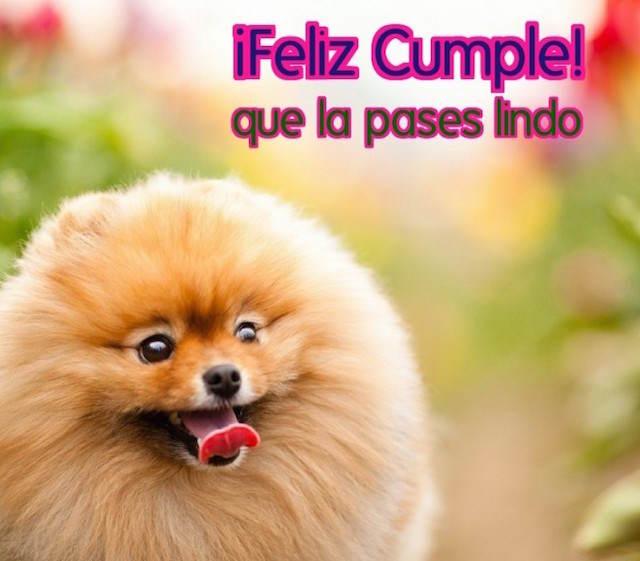 feliz cumpleaños pasar lindo palabras felicitación