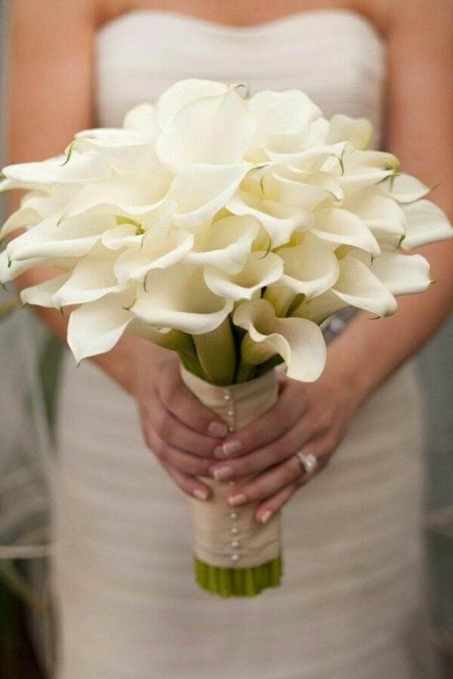 ramos de novia unos alcatraces maravillosos