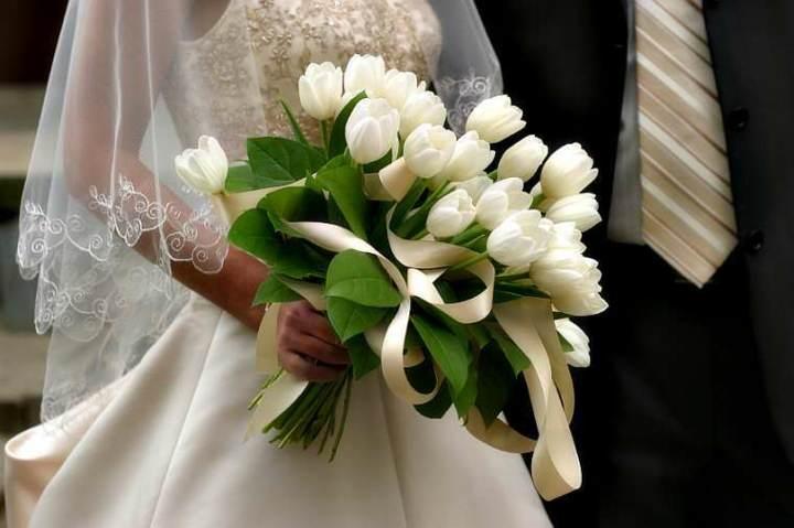 tulipanes blancos el ramo de flores para la novia