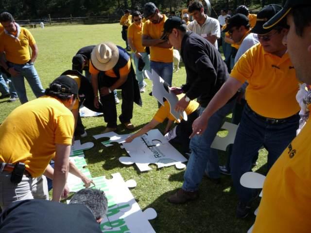 team building actividades en equipos  aire libre