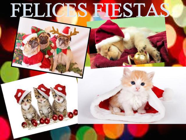 Felices fiestas tarjetas de Navidad animales pequeños