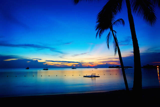 San Valentín 2015 Jamaica romántica belleza