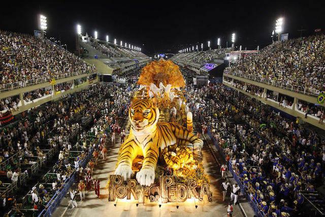 desfile tigre carnaval celebración exuberante