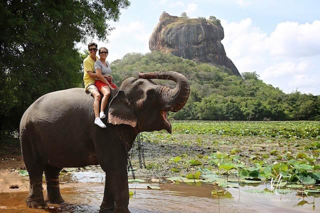excursión Sri Lanka festejar 14 de febrero