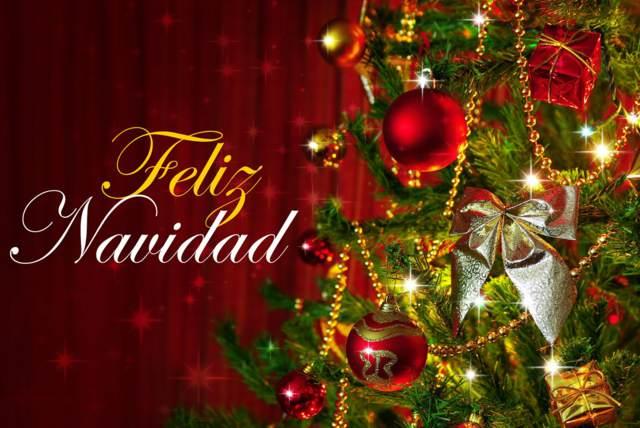 Navidad festividad especial