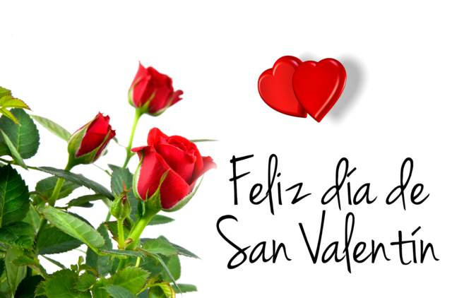 rosas frases feliz San Valentín