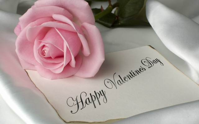 día de San Valentín rosa preciosa