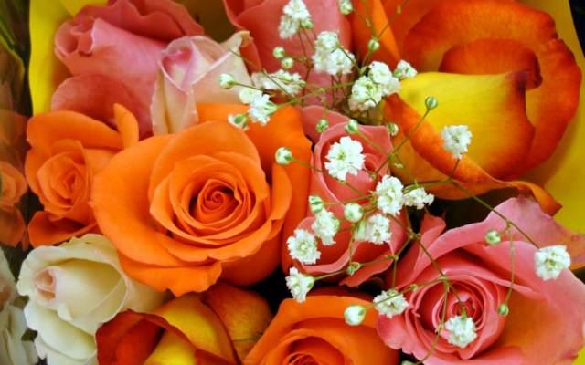 ramos rosas color blanco rosa naranja tendencias modernas