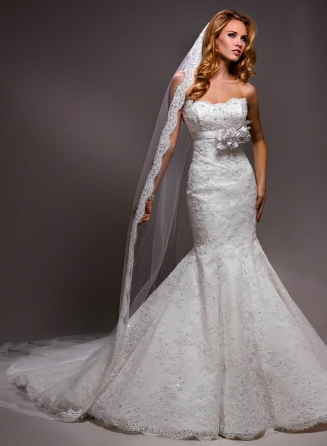 novia velos maravillosos vestido precioso