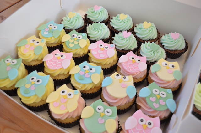 pintadas aves baby shower cupcakes buho