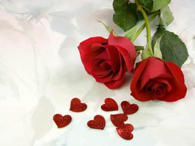 detalles de amo rosas rojas aniversario memorable