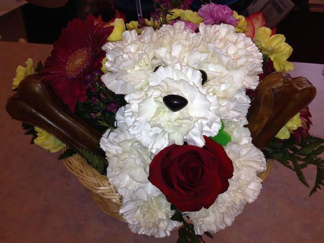 magnífico diseño flores perro precioso