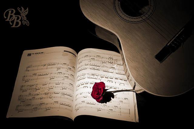 guitarra rosa canciones para dedicar a mi novio románticas