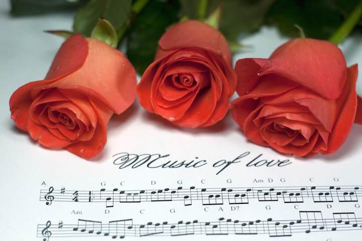 rosas rojas notas canciones para dedicar a mi novio