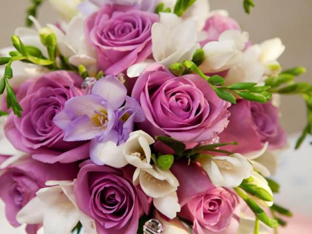 flores bonitas rosas maravillosas decoración fiestas