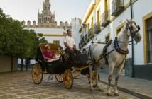 aniversario-de-novios-ideas-romanticas-paseo-caballos
