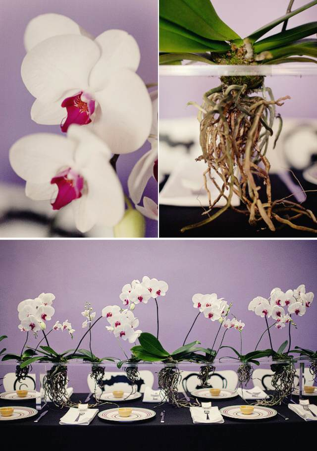 centros de mesa  con orquídeas ideas preciosas fiesta temática