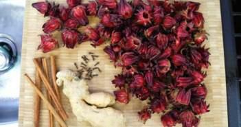 flor-de-jamaica-ideas-sanas-fiesta-tematica-menu-saludable
