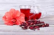 flor-fe-jamaica-bebida-saludable-informacion