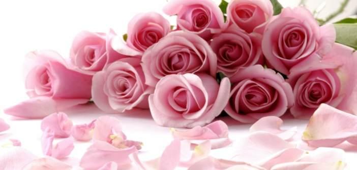 flores-hermosas-noviazgo-propuestas-ideas