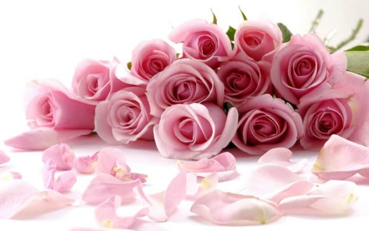 flores hermosas para los noviazgos inolvidables - Fotos De Flores Preciosas