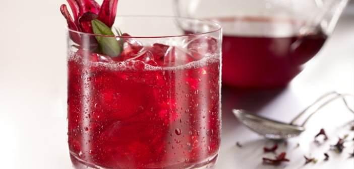 recetas-fantasticas-flor-jamaica-fiesta-tematica